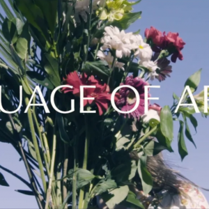 Language of Aroma: The Documentary